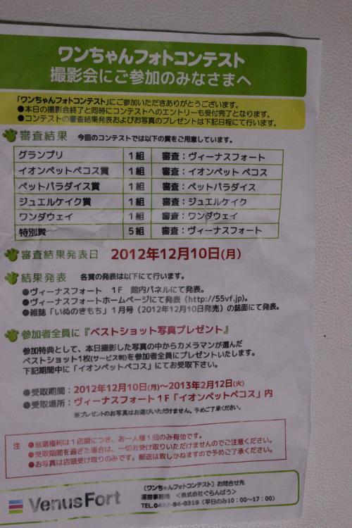 IMG_0413_convert_20121001215252.jpg