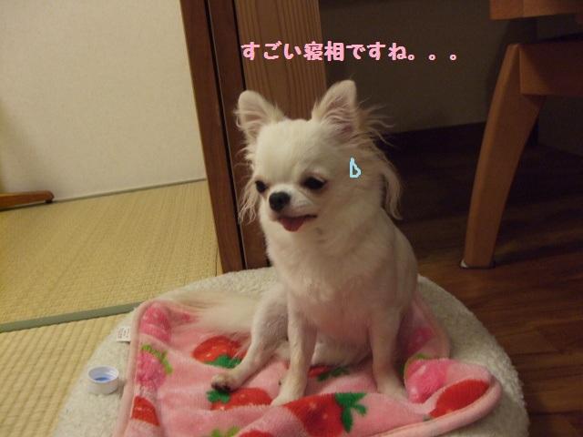 BLOG6014.jpg