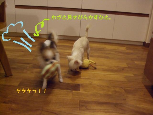 BLOG6830.jpg