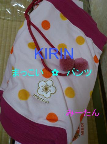 DSC_0442_convert_20120831205230.jpg