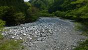20120512丹沢湖30