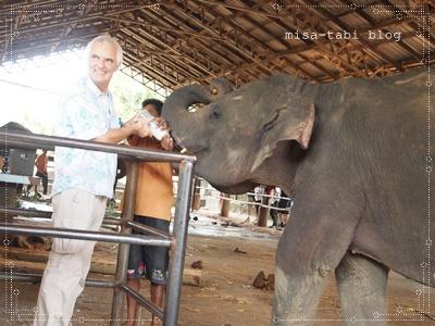 象の孤児院-スリランカ- 200