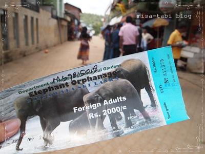 象の孤児院-スリランカ- 161