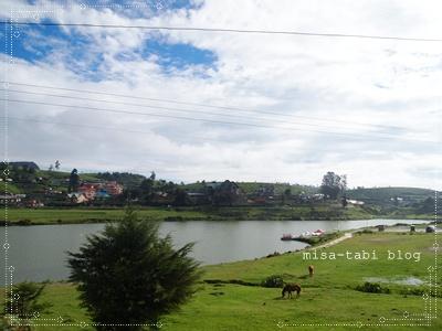 ヌワラエリヤ-スリランカ- 261