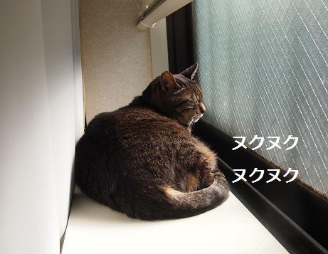 25021001.jpg