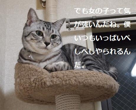 25021006.jpg