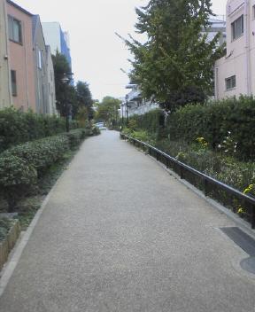 目黒川緑道