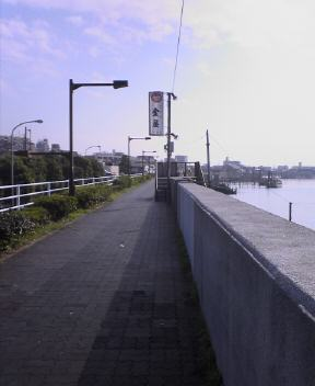 旧江戸川沿い