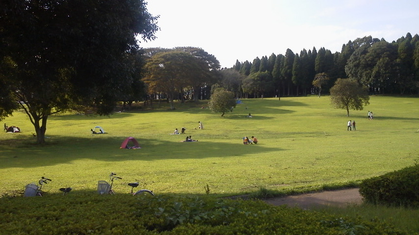 昭和の森 (8)