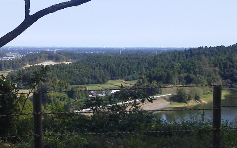 昭和の森 (2)