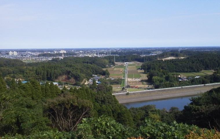 昭和の森 (3)