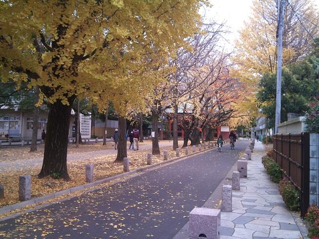 京成線沿い3