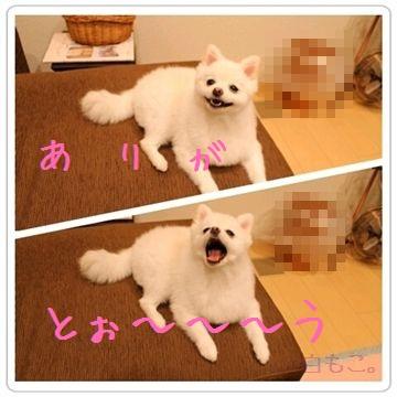20120803_5.jpg