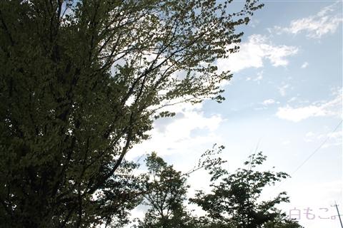 20120831_4.jpg
