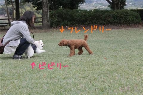 20121023_10.jpg