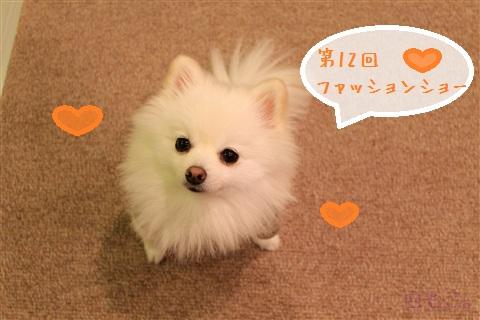 20121111_1.jpg