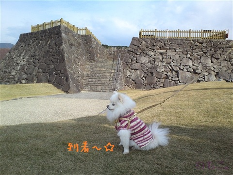 20121210_1.jpg