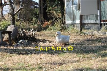 20121216_16.jpg