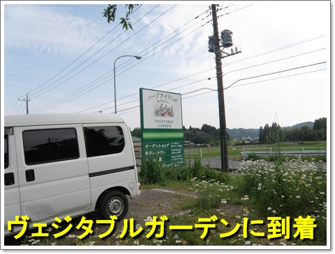 P5260102.jpg
