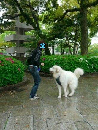 201204_広島4