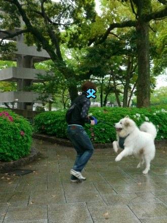 201204_広島3