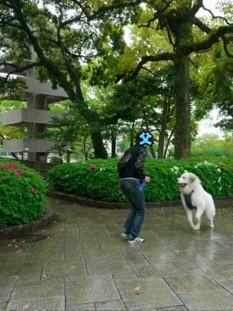 201204_広島2
