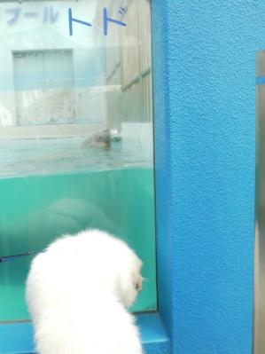 201211_水族館1.jpg