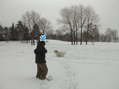 201302_豊岡雪遊び15