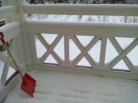 Talvi Parvike 2012