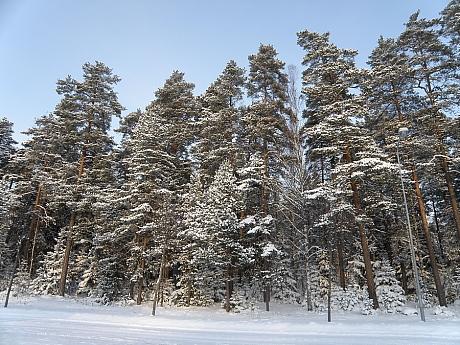 Maisema lumi 02.12.2012