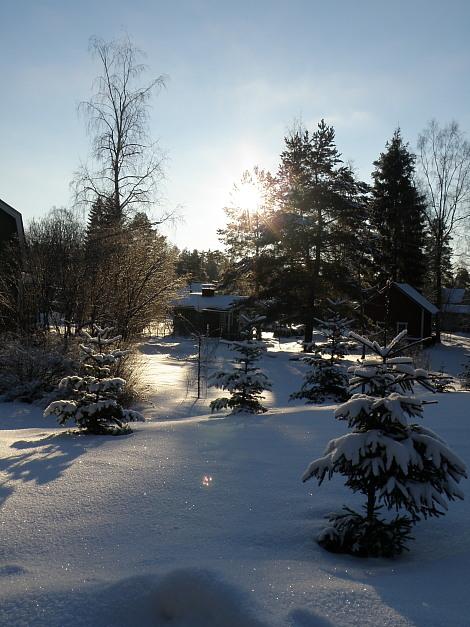 Maisema talvi