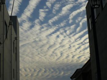 2012/10/13秋の空