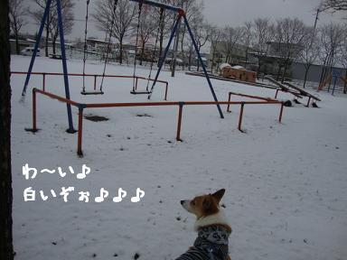 雪道散歩公園