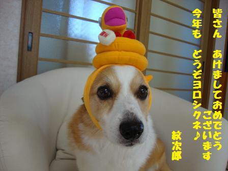2013挨拶紋次郎
