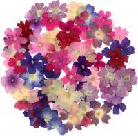 bouquet_034_convert_20130328085826.jpg