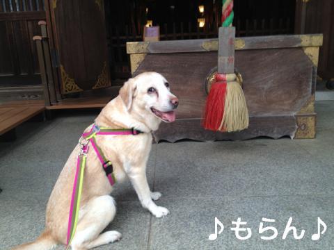 130320 多田神社-1