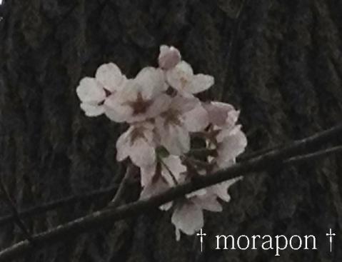 130320 多田神社-3