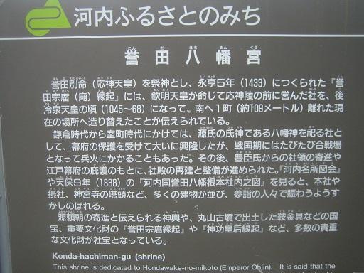IMG_6871 - コピー