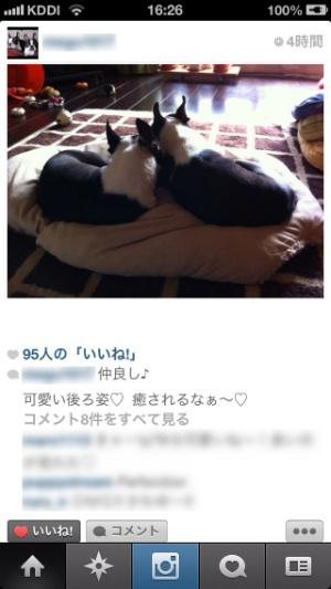 image_20121013164246.jpg