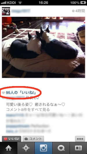 image_20121013212214.jpg