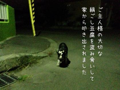 image_20121017184115.jpg