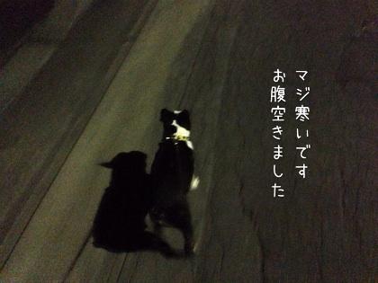 image_20121017185117.jpg