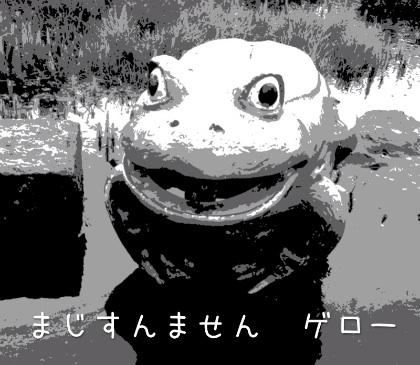 image_20121017193303.jpg