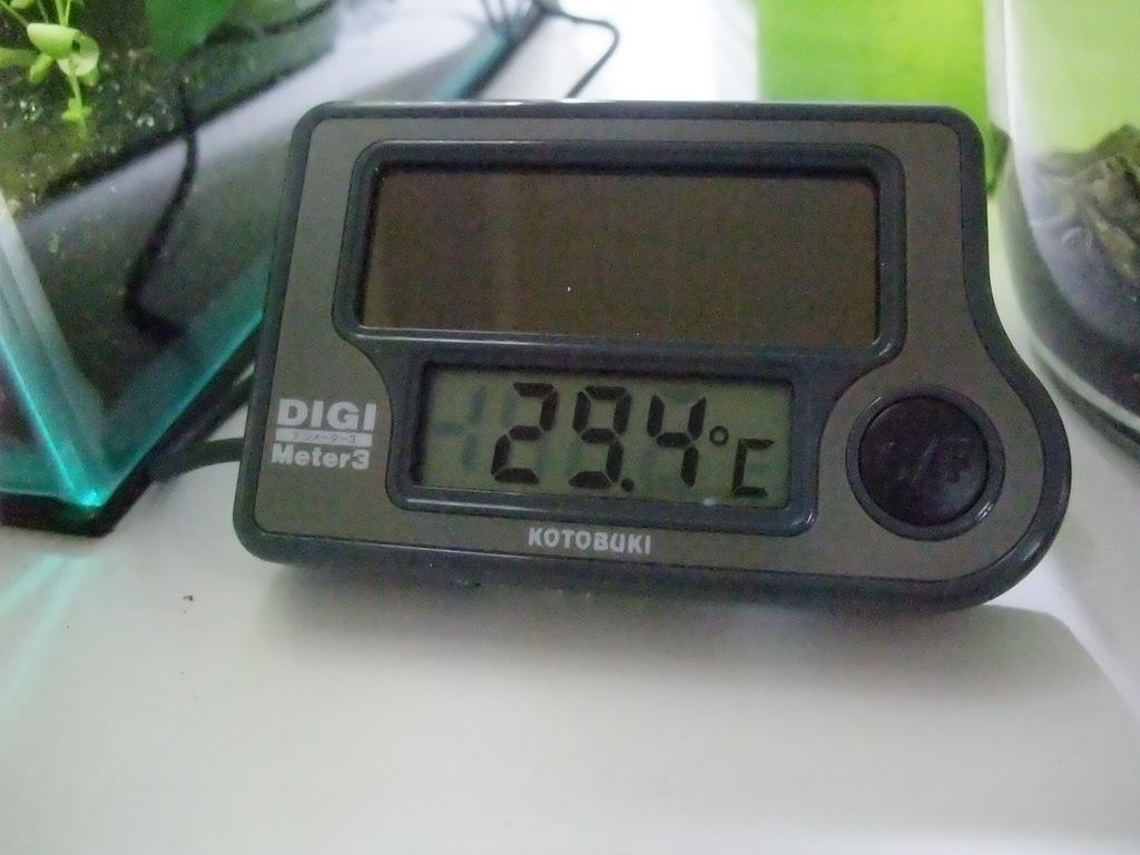 DSCF1713.jpg