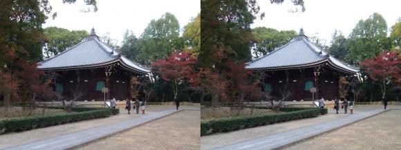 仁和寺 経蔵(平行法)