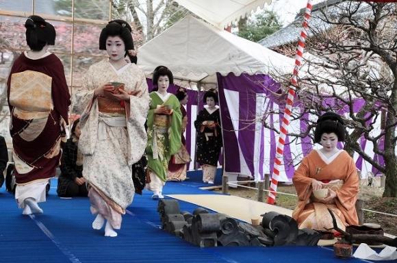 梅花祭 芸舞妓による野点2