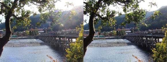 嵐山④(平行法)