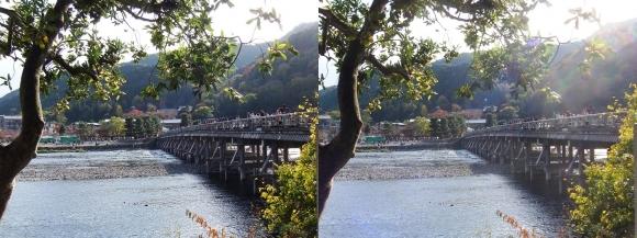 嵐山④(交差法)