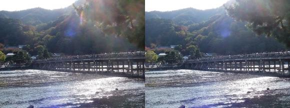嵐山③(平行法)