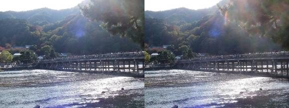 嵐山③(交差法)